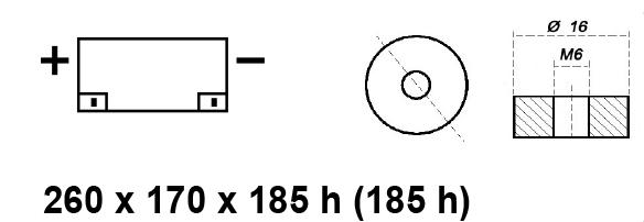 BATTERIA MOBILITY/CARROZZINA ELETTRICA AGM 12V 65AH BE12060CY
